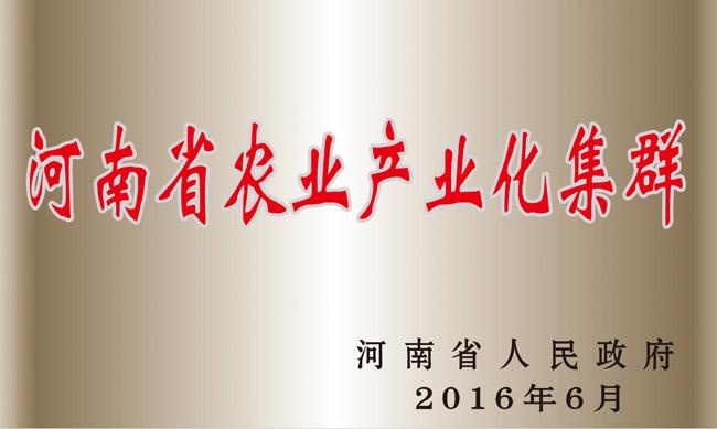 河南省农业产业化集群